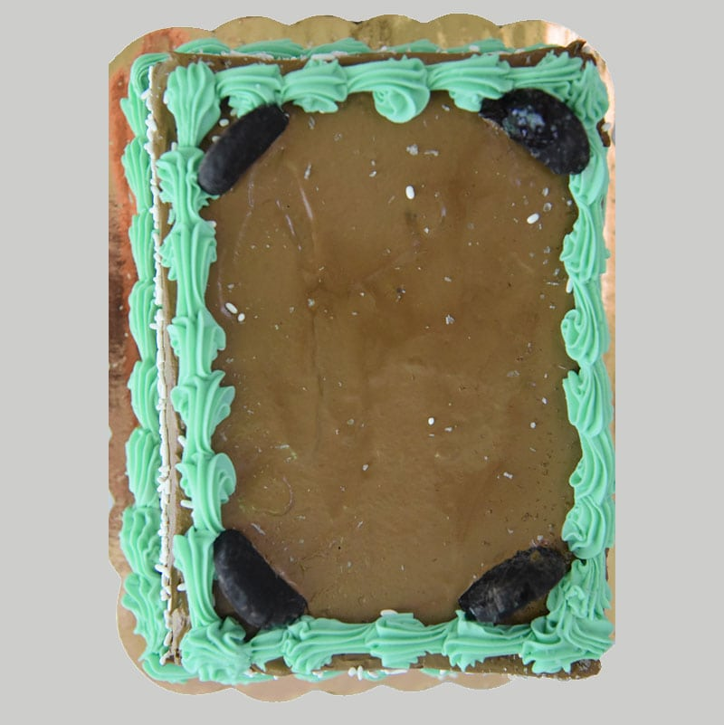 Andes Mint Chocolate Chip